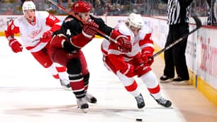 Zbynek Michalek (4) and the Coyotes expect to have their hands full with the Red Wings in the opening playoff round.