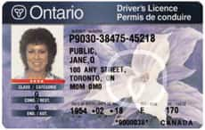 Ontario to delay driver's licences to dropouts - Canada - CBC News