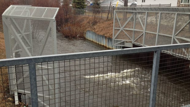 News - Junction Creek flood risk