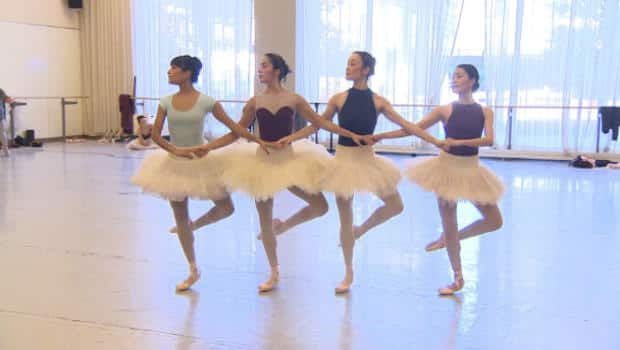 The National - Swan Lake's gruelling spotlight