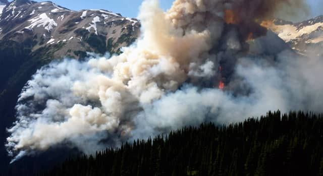 The National - Forest fires send choking smoke and ash to Vancouver