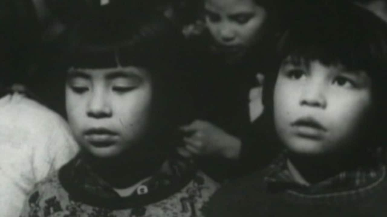 cultural genocide label for residential schools has no legal poster of video clip