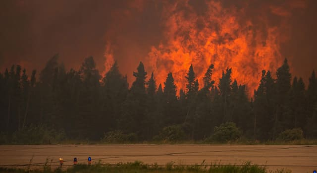 News - Why the increase in wildfires?