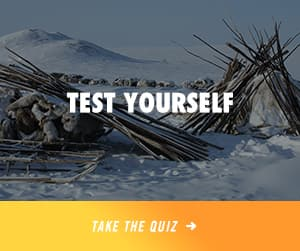 Test Yourself: Take the Quiz