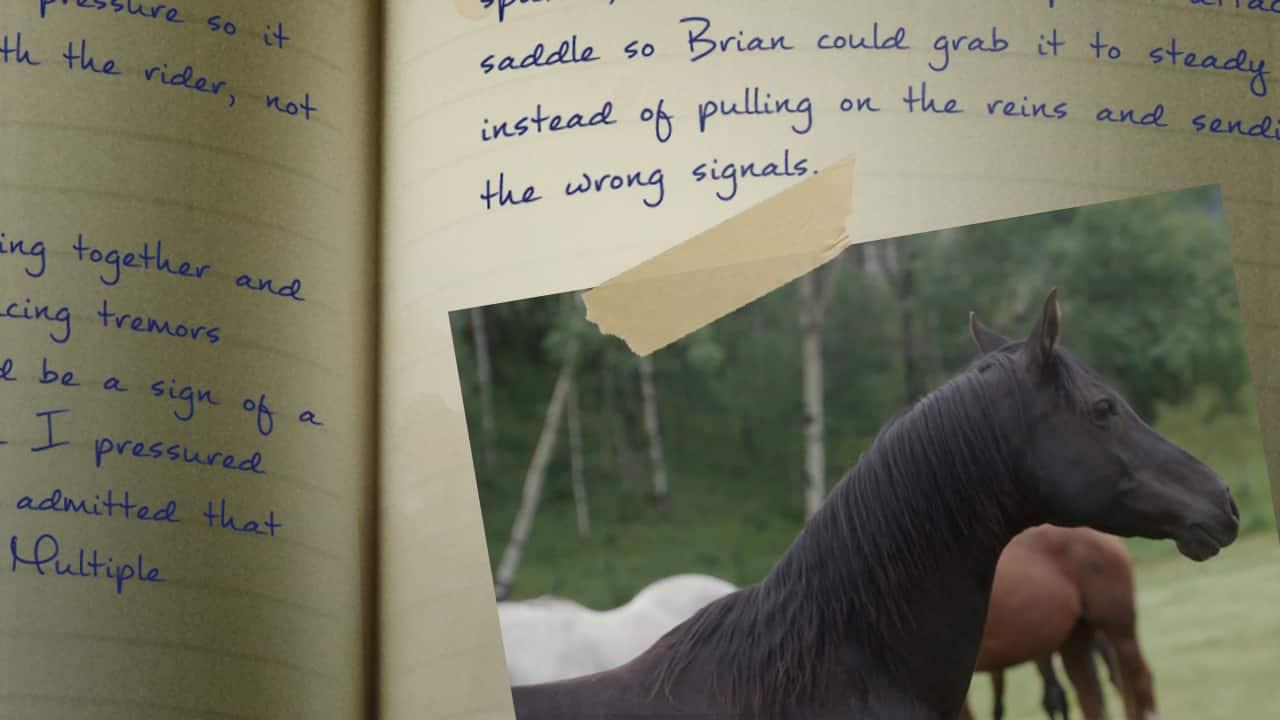 810_wild_horses