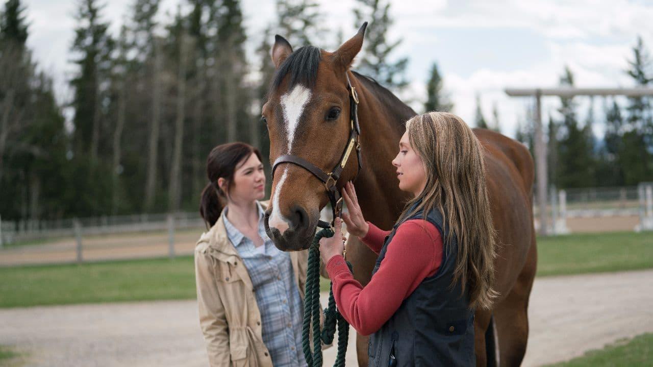 Season 11 Premieres Sunday! - Heartland