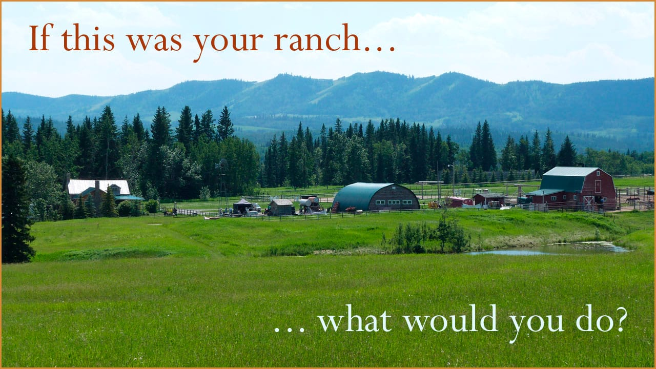 What if you ran Heartland?