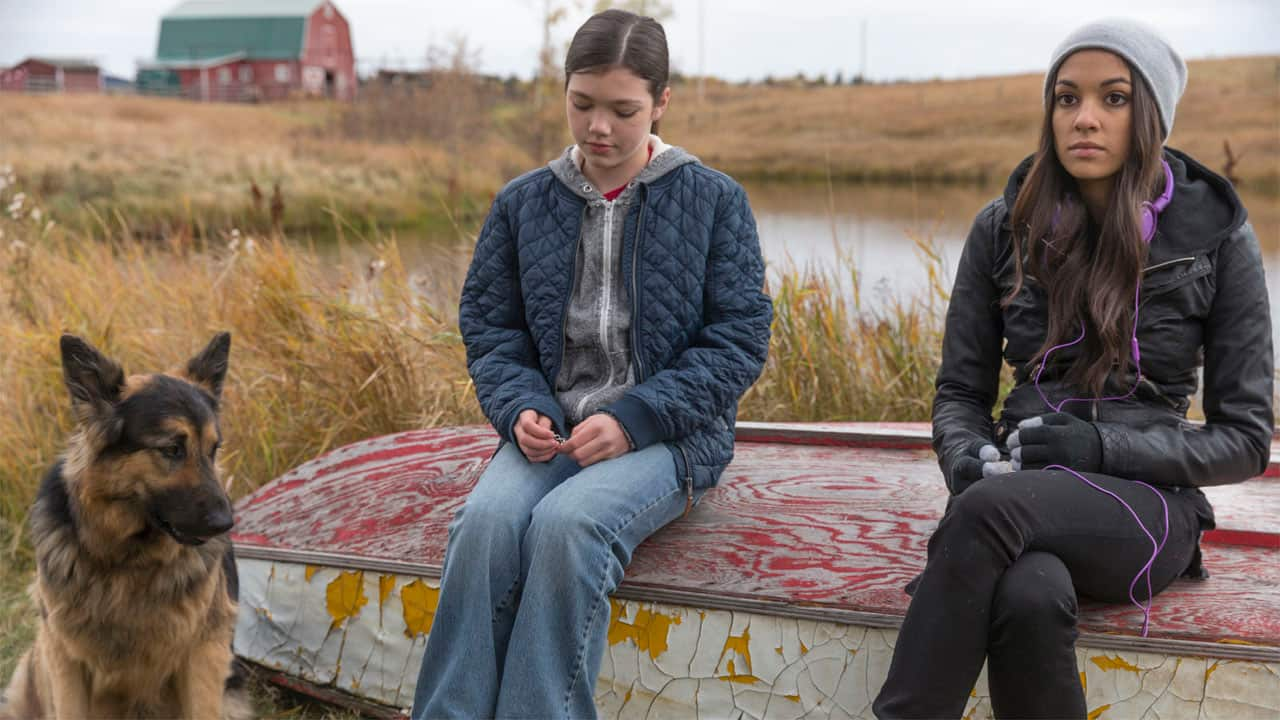 Find another new episode of Heartland this Sunday on CBC ...