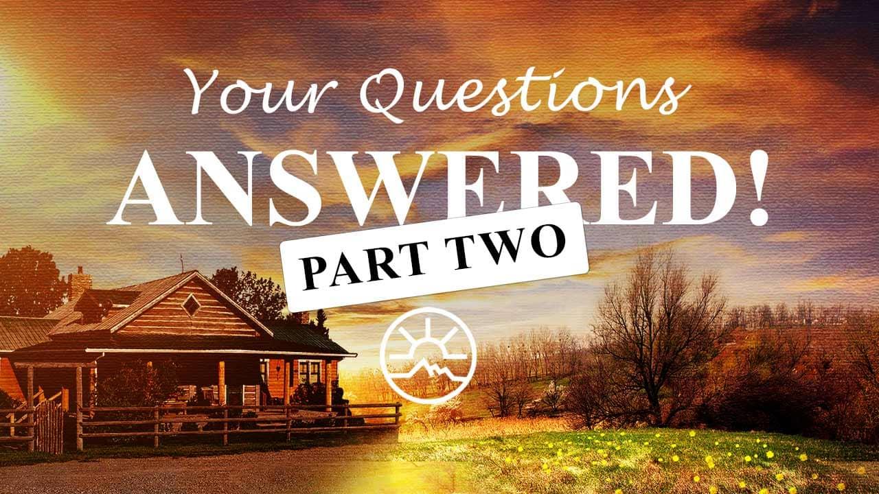 questions-2