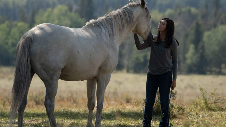 Season 12 Episodes - Heartland
