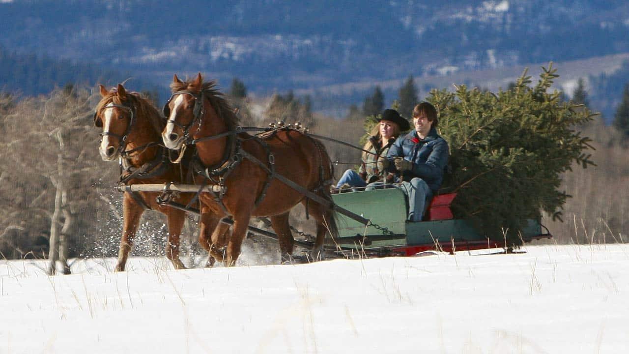 A Heartland Christmas.A Heartland Christmas Episodes Heartland