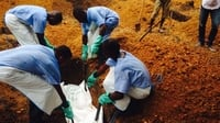 health-ebola-africa.jpg