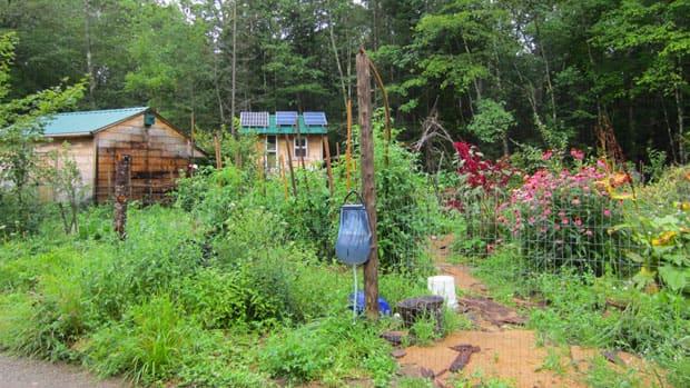 The garden of degrowth advocate Jim Merkel.