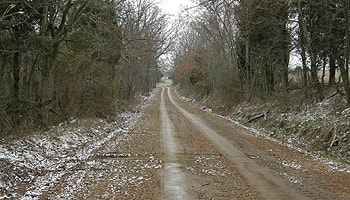 trail-of-tears-road.jpg
