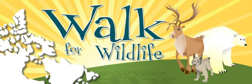 Wildlife_headder.jpg