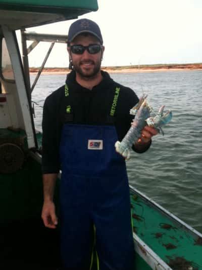 matt blue lobster 2.JPG