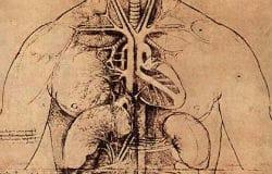 vascularsurgery.jpg