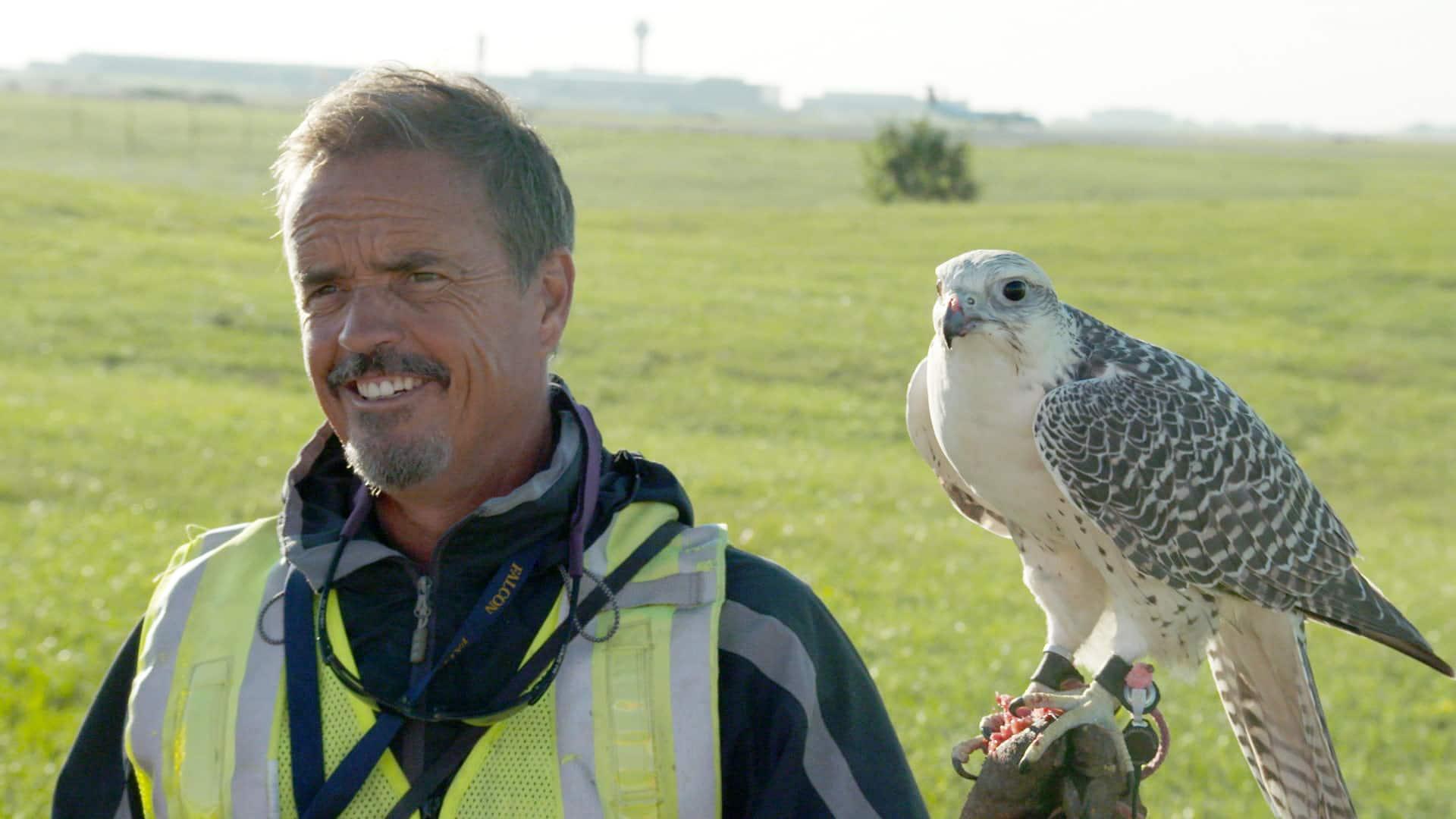 Meet Keith Everett: Falconer at Toronto Pearson International Airport
