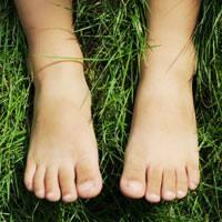 My feet.
