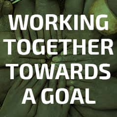 Working together towards a goal