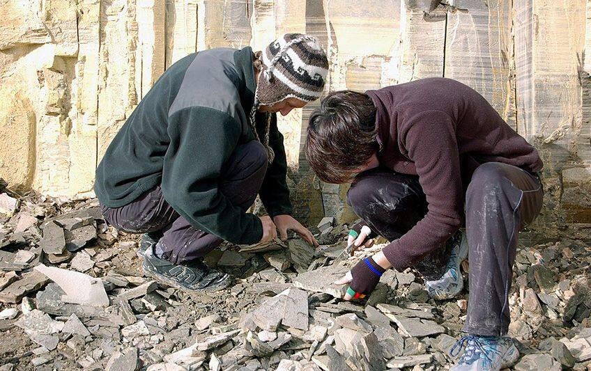 two student scientists in a fossil area hitting rocks with hammers