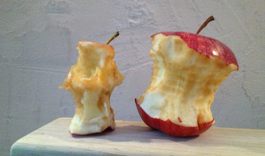 Two apple cores
