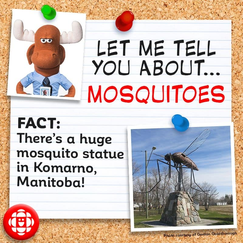 There's a huge mosquito statue in Komarno, Manitoba.