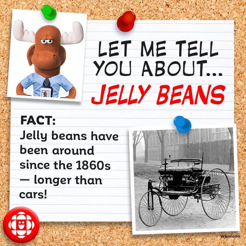 FACT: Jelly beans have been around since the 1860s — longer than cars!