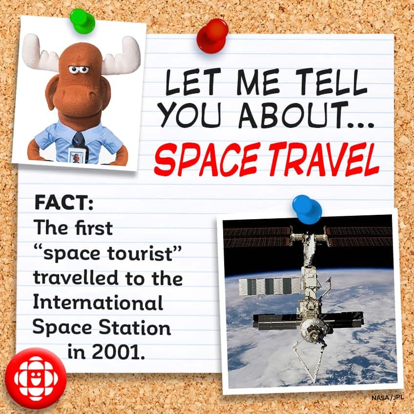 FACT: The first space tourist traveled to space in 2001.