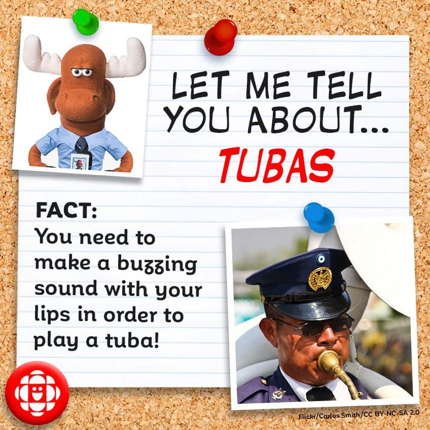 FACT:  You need to make a buzzing sound with your lips to play a tuba!