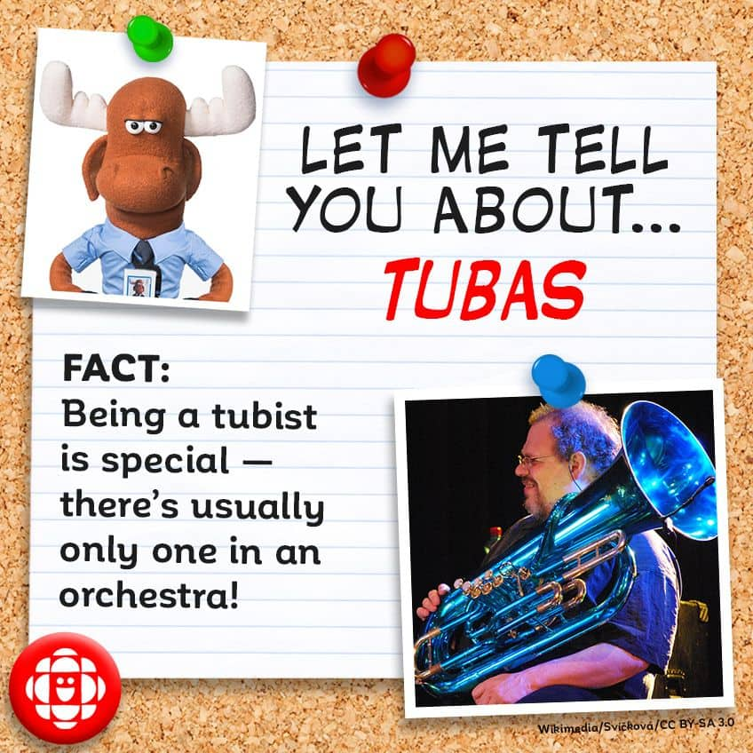 FACT:  Being a tuba player is special—there's usually only one in an orchestra!