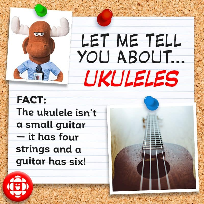 4 fun facts for World Play Your Ukulele Day! | Explore | Awesome Activities  & Fun Facts | CBC Kids