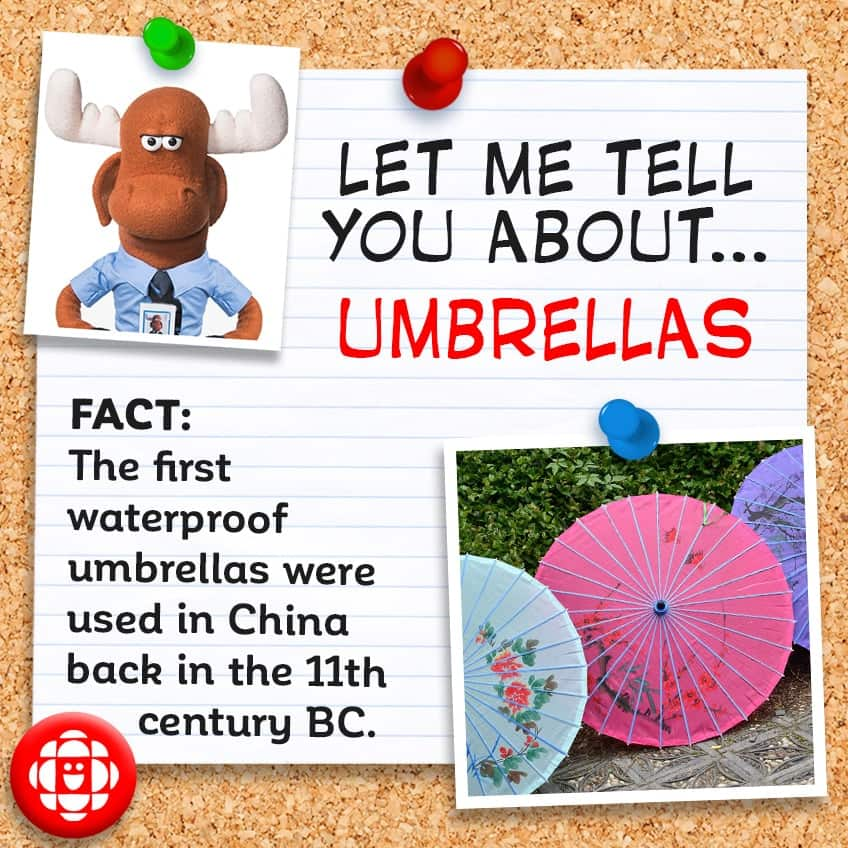 The first waterproof umbrellas were used in China back in the 11th century BC.
