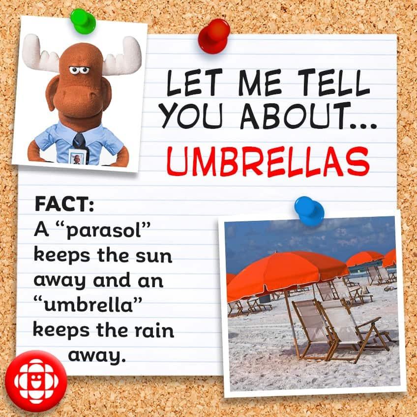 """Fact: A """"parasol"""" keeps the sun away and an """"umbrella"""" keeps the rain away."""
