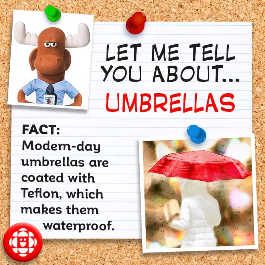 Modern-day umbrellas are coated with Teflon, which makes them waterproof.