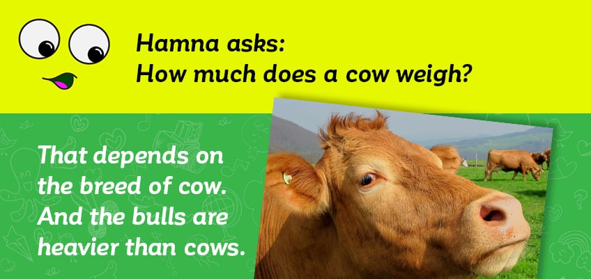 We answer your questions about… farm animals   Explore   Awesome