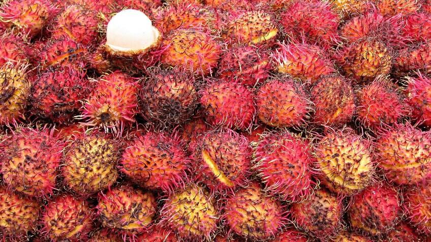 A whole big pile of Rambutan fruit