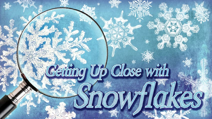 getting up close with snowflakes explore awesome activities