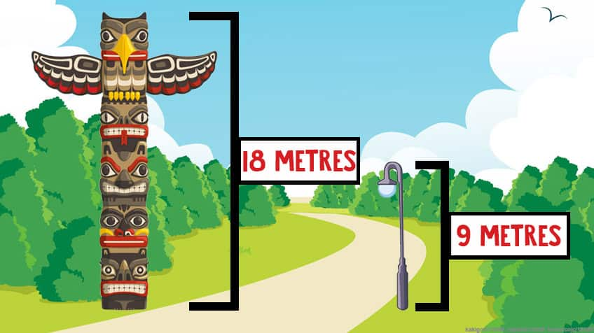 A graphic comparing the heights of an 18 metre totem pole and a 9 metre street light