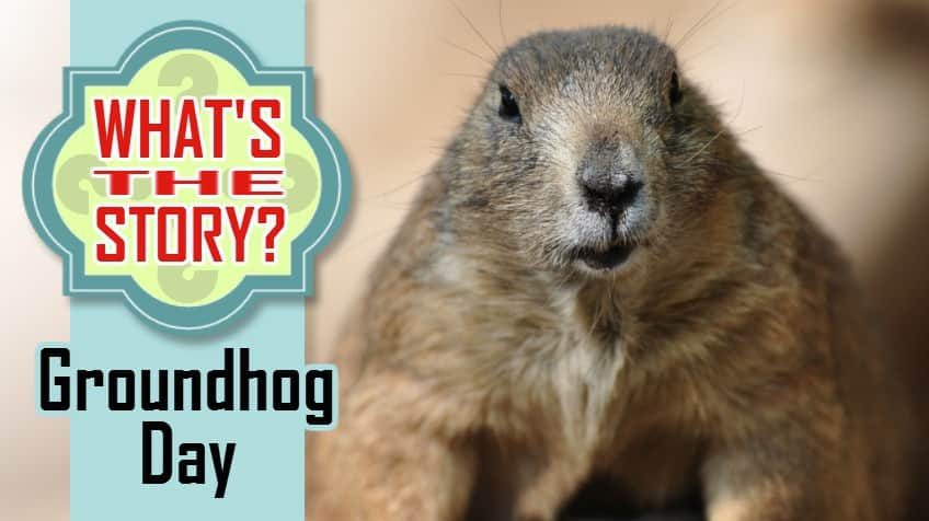 What's The Story? Groundhog Day