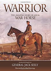 cover of the book Warrior written by Jack Seely