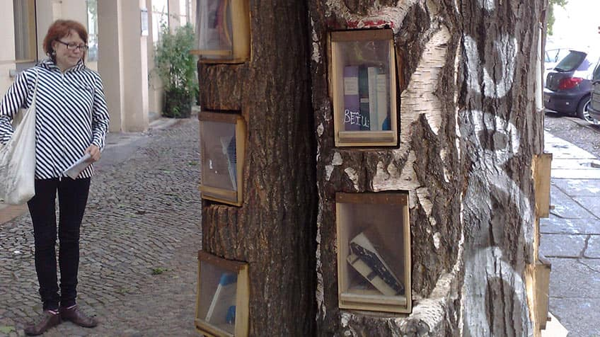 A tree on a sidewalk that has windows to hold books.