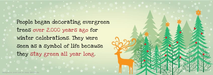 people began decorating evergreen trees over 2000 years ago for winter celebrations they were seen - All About Christmas