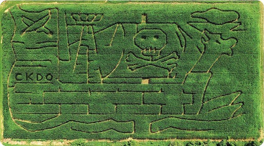 Pingle's pirate corn maze from overhead