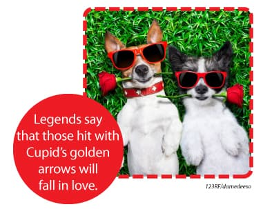 The legends say that those hit with Cupid's golden arrows will fall in love