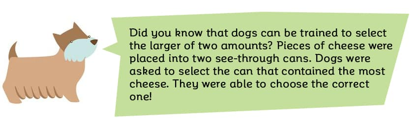 Did you know that dogs can be trained to select the larger of two quantities? By placing pieces of cheese into two opaque cans, and asking the dogs to select the one that contained the most, they were able to choose the correct one. Just don't ask them to do your math homework.