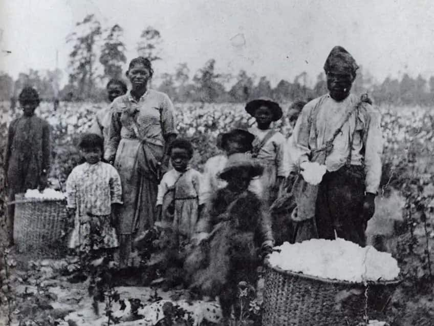 Family of enslaved people picking cotton in a field in Georgia, around 1850.