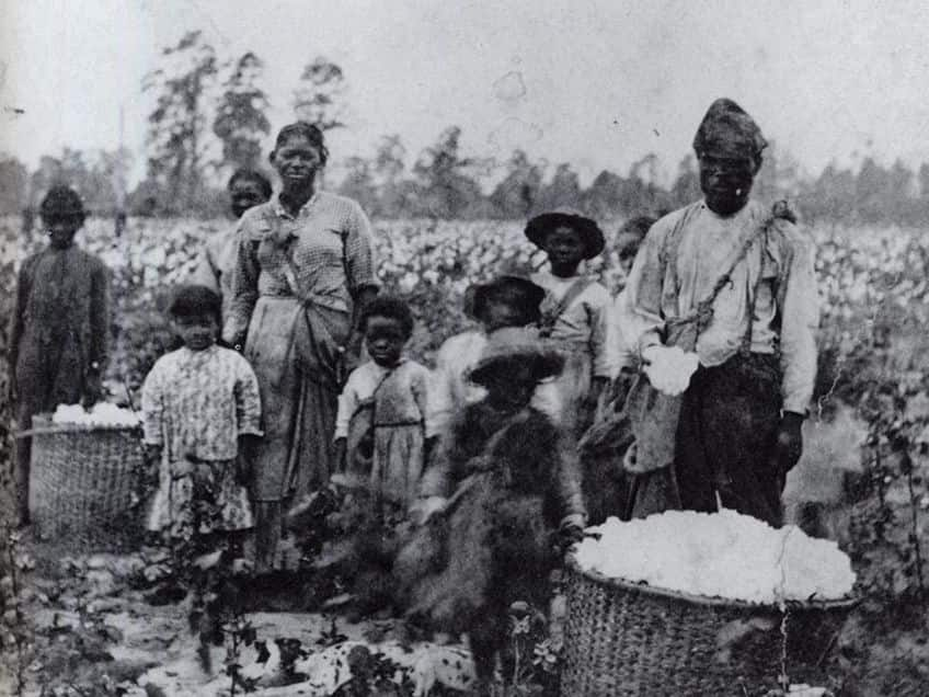 a very old photo of a black slave family picking cotton in Georgia in 1850