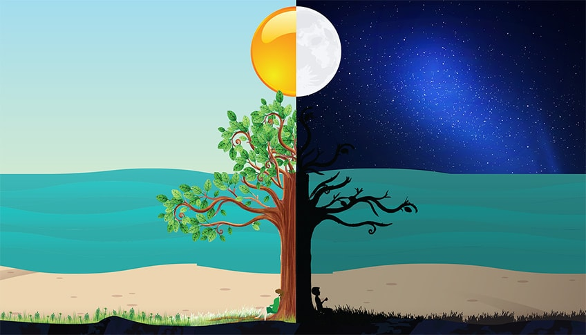 illustration showing a tree in a field where half is in sunlight and half is in nighttime