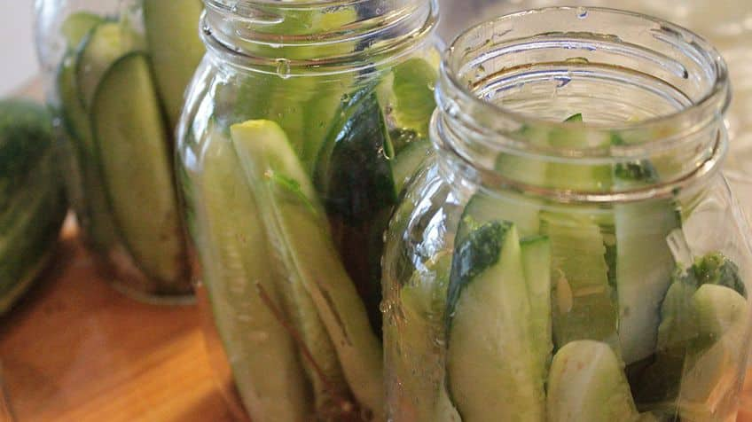 Fact: Pickles date back nearly 4,500 years ago in the Middle East.